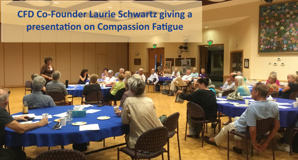 CFD_DC_Laurie Compassion Fatigue at St. James copy